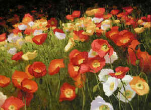 playful poppies.jpg (79200 bytes)